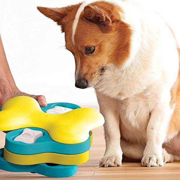 Nina Ottosson by Outward Hound Dog Tornado Interactive Dog Toy