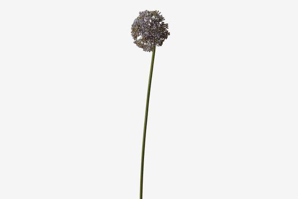 Terrain Faux-Allium Spray