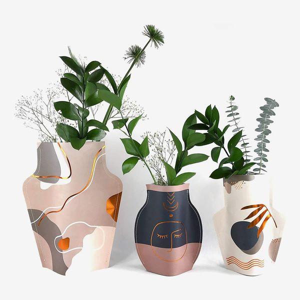 Eye Travel Lab Paper Vase Set