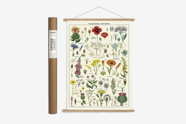 Vintage-Style Wildflower Poster With Hanger Kit