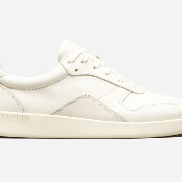 Everlane Court Sneakers