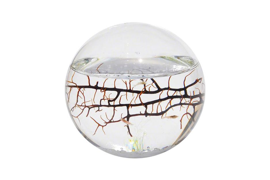 EcoSphere Closed Aquatic Ecosystem, Sphere