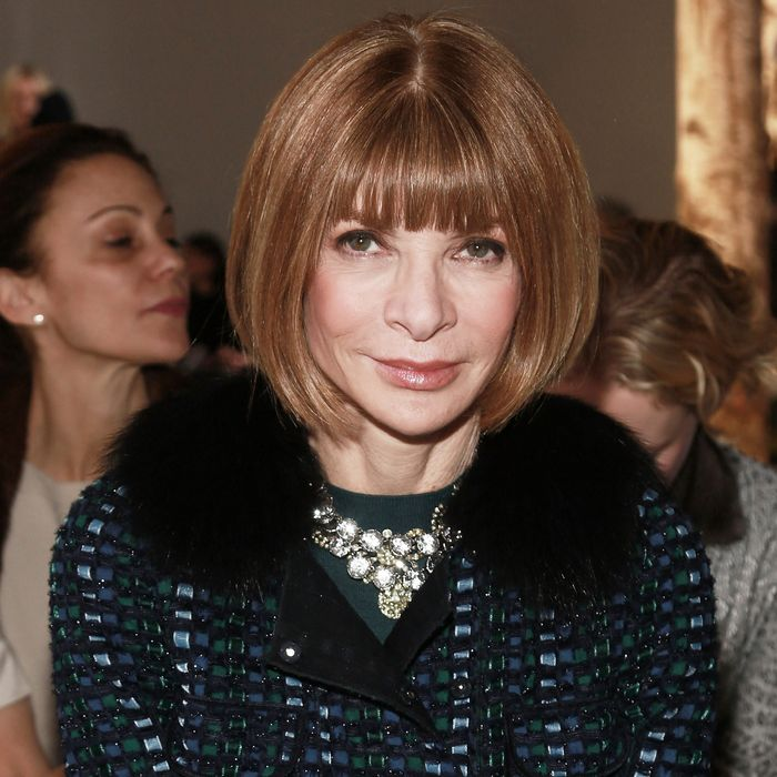 NEW YORK, NY - FEBRUARY 12: Editor-in-Chief at American Vogue Anna Wintour attends the Boss Women fashion show during Mercede250 West 55th Street on February 12, 2014 in New York City. (Photo by Paul Zimmerman/WireImage)