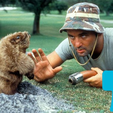 Can You Guess Famous Caddyshack Lines?