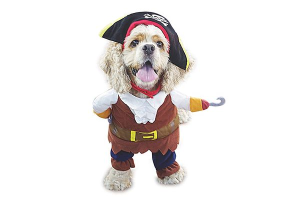 NACOCO Pet Dog Costume Pirates of the Caribbean Style