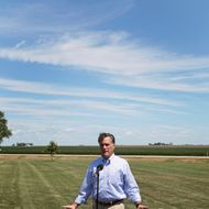 Romney standing in a field.