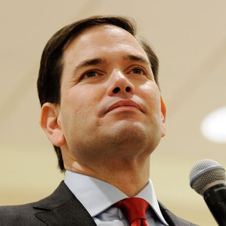 Presidential Candidate Marco Rubio Campaigns In Florida