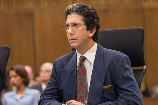 "THE PEOPLE v. O.J. SIMPSON: AMERICAN CRIME STORY ""A Jury In Jail"" Episode 108 (Airs Tuesday, March 22, 10:00 pm/ep) -- Pictured: David Schwimmer as Robert Kardashian. CR: Prashant Gupta/FX"
