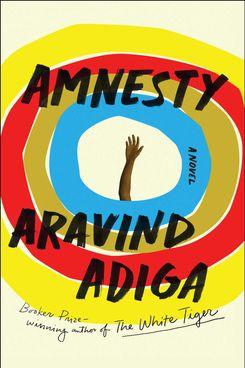 Amnesty, by Aravind Adiga