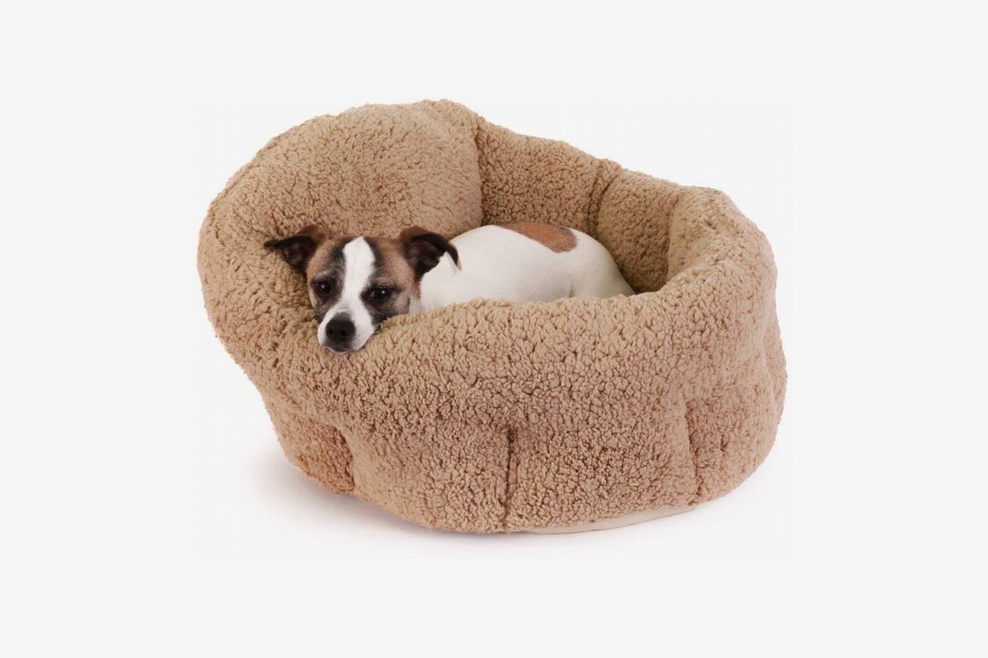 Best Dog Beds, According to Dog Experts 2019