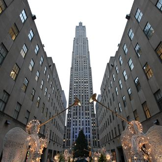 NEW YORK, NY - NOVEMBER 30: The 74-foot Norway Spruce dressed with 30,000 energy efficient led lights before they are turned on, is on display at the Rockefeller Center Christmas tree lighting at Rockefeller Center on November 30, 2010 in New York City. (Photo by Neilson Barnard/Getty Images)