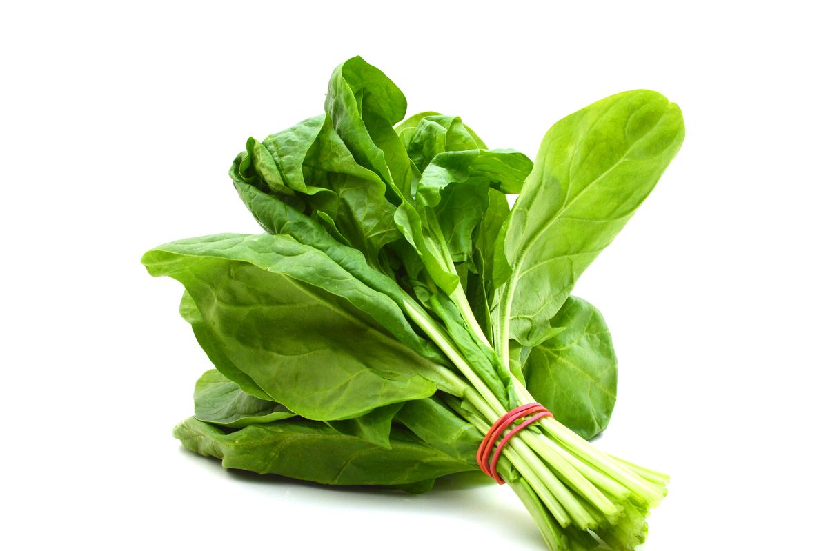 Scientists Develop Bomb-Detecting Baby Spinach