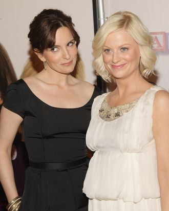 NEW YORK - APRIL 23: Actors Tina Fey and Amy Poehler arrive to the