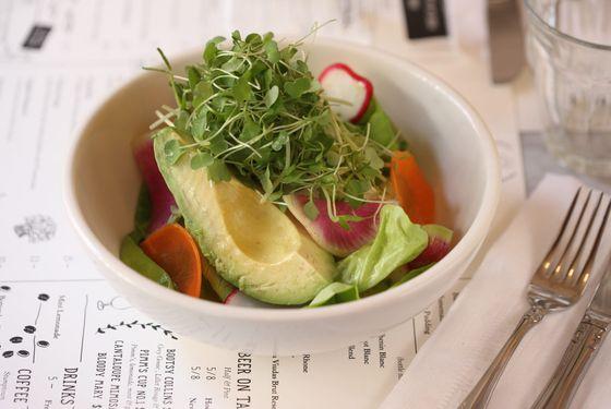 House salad: butter lettuce, shaved radish and carrots, avocado, pea shoots, tarragon vinaigrette.
