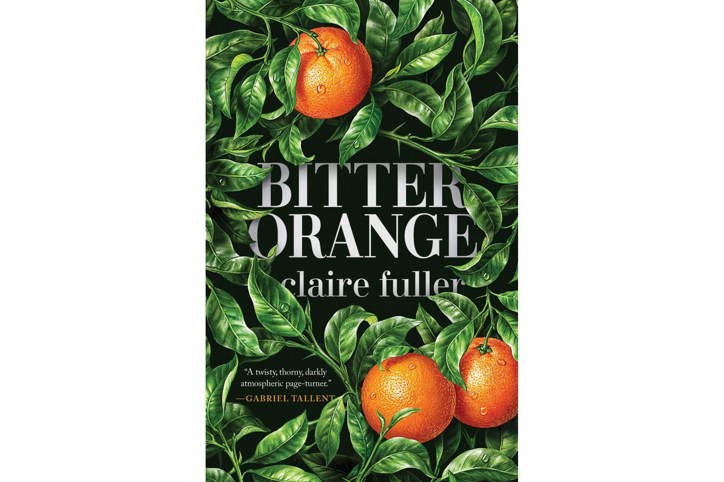 4. <em>Bitter Orange</em>, by Claire Fuller (Tin House Books)