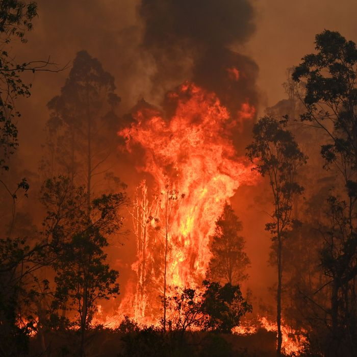 A fire raging in Bobin, Australia, in early November.