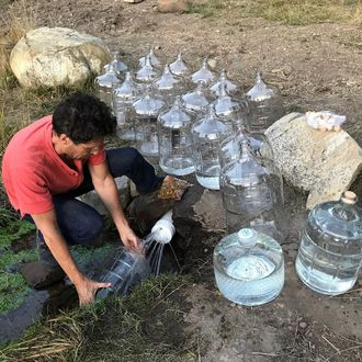 48af321f45 Juicero Founder Now Promoting $40 Jugs of 'Raw Water' in Silicon Valley
