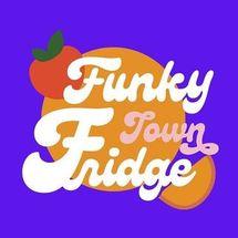 Funky Town Fridge