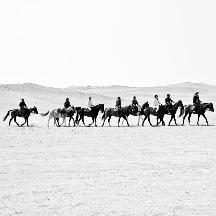 Riding polo horses in Egypt's Abusir Desert.