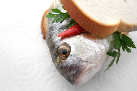 A tuna fish sandwich, hold the bicycle.