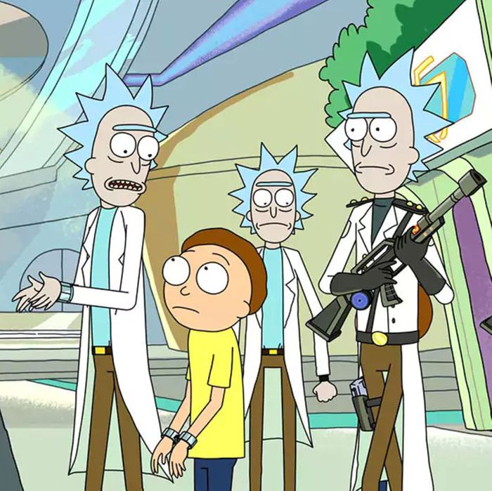 rick and morty a guide to all the ricks and mortys