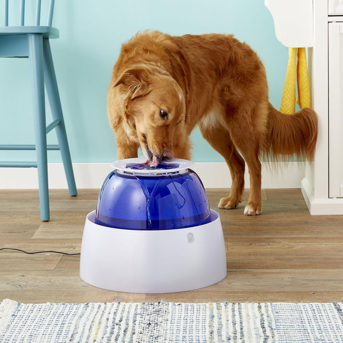 Dogit Design Fresh & Clear Large Dog Drinking Fountain