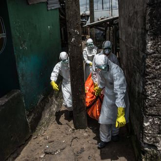Red Cross members carry dead body of Mambodou Aliyu (35) died due to the Ebola virus,, in Monrovia, Liberia on 15 October, 2014.