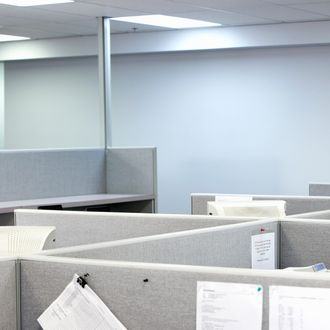 Cubicles in office --- Image by ? 2/Noel Hendrickson/Ocean/Corbis