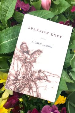 Sparrow Envy by Dr. J. Drew Lanhan