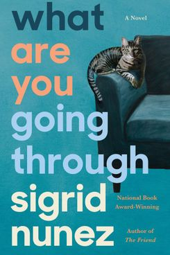 What Are You Going Through, by Sigrid Nunez