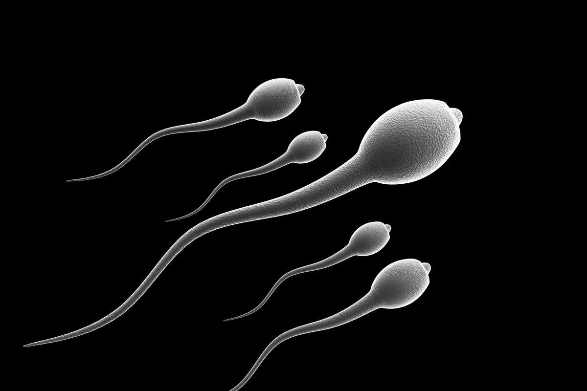 otsutstvie-spermotozoidov-v-sperme