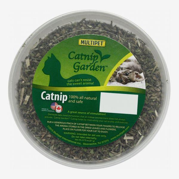 Multipet Catnip Garden Catnip Tub