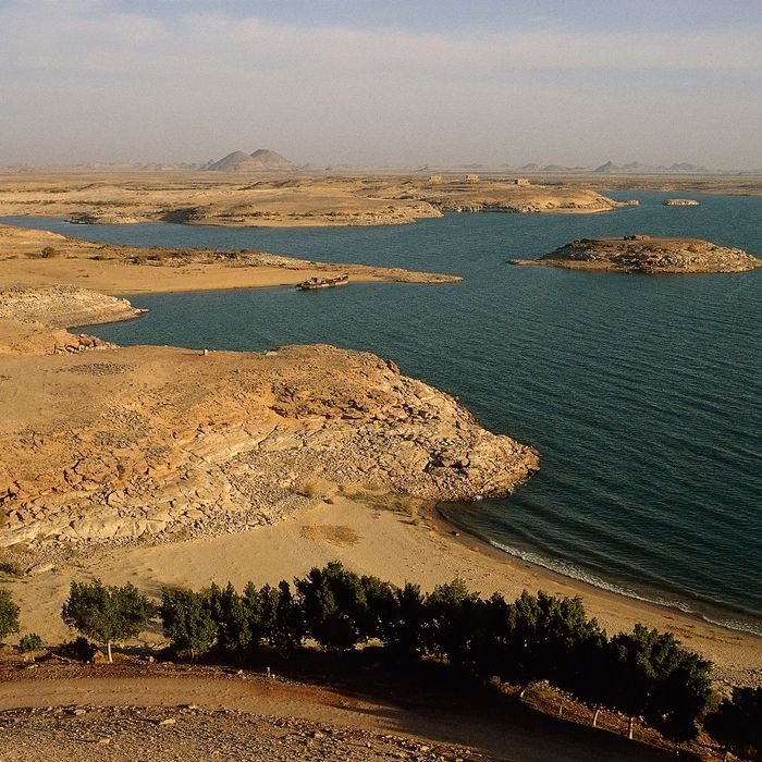 Egypt's Lake Nasser is the world's largest man-made lake. The lake's sediment can be used to reforest areas of desert.