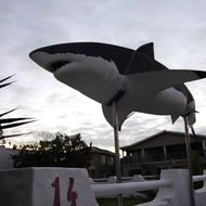 TO GO WITH AFP STORY BY JUSTINE GERARDYThe mock up of a great white shark is seen outside a private house on March 30, 2010 in Gansbaai in the Western Cape, South Africa.AFP PHOTO/GIANLUIGI GUERCIA (Photo credit should read GIANLUIGI GUERCIA/AFP/Getty Images)