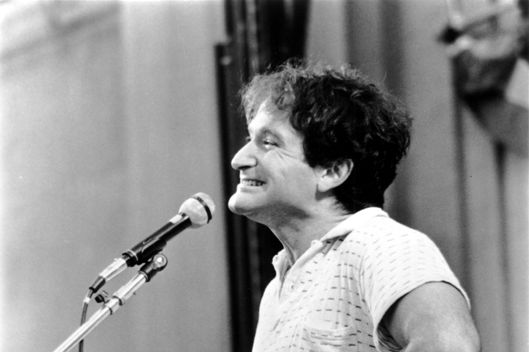 Image result for Robin Williams Stand-up