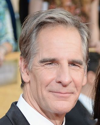 LOS ANGELES, CA - JANUARY 18: Actor Scott Bakula attends the 20th Annual Screen Actors Guild Awards at The Shrine Auditorium on January 18, 2014 in Los Angeles, California. (Photo by Jeff Kravitz/FilmMagic)