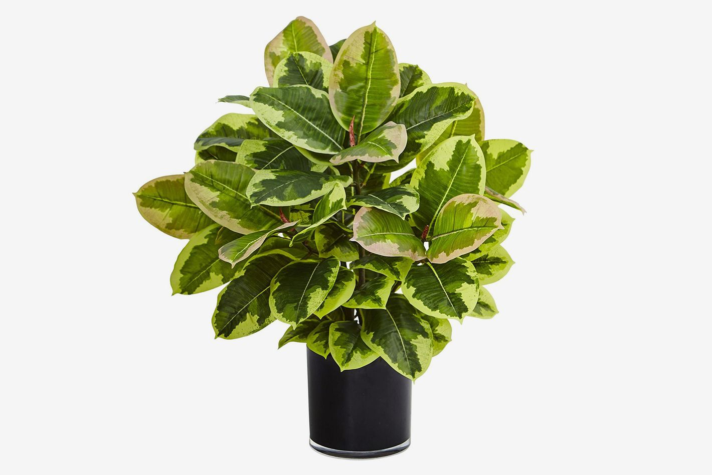19 Best Artificial Plants 2018
