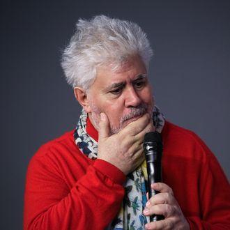 Meet the Filmmaker: Pedro Almodovar,