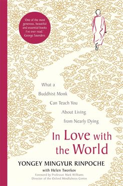 In Love with the World, Yongey Mingyur Rinpoche