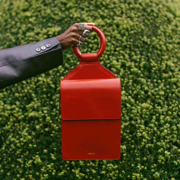 Ashya x t.a. New York Shema Slingback Bag