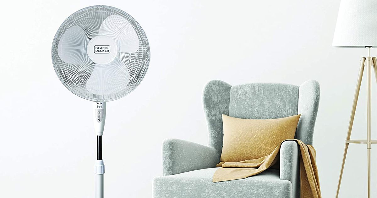 12 Best Cooling Floor Fans On Amazon 2020 The Strategist New York Magazine