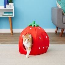 YML Strawberry Covered Cat & Dog Bed, Small