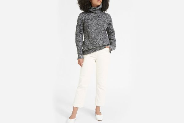 Everlane Italian Soft Wool Rib Turtleneck