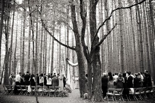 Nymag Real Weddings: Wedding Album: Hilltop Nuptials In The Woods -- The Cut