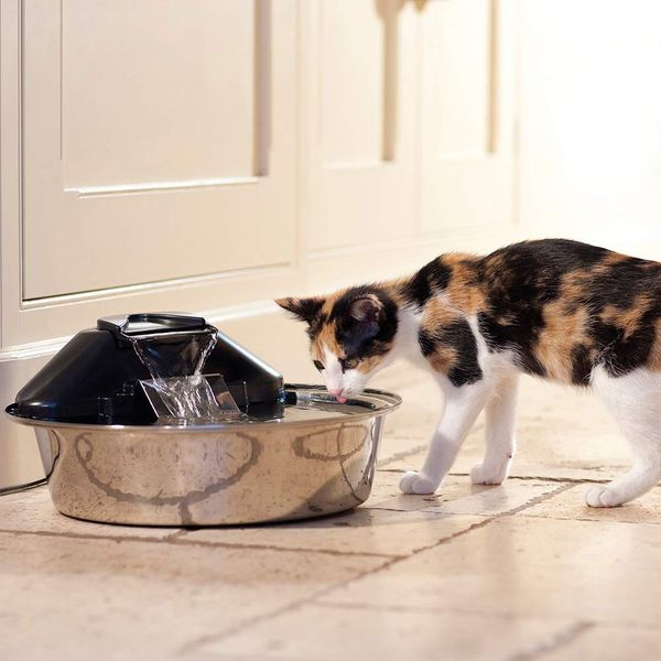 PetSafe Drinkwell Zen Stainless Steel Dog and Cat Water Fountain