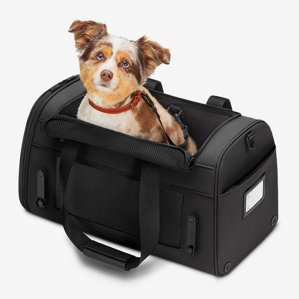 Away The Pet Carrier
