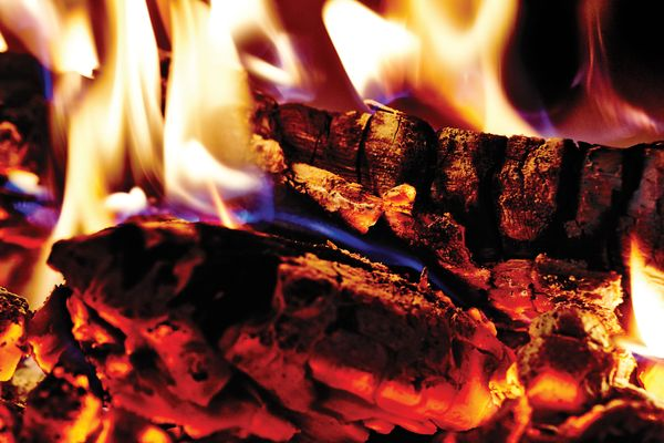 New Flames: Why Cooking With Wood Is the Hottest Trend in Town