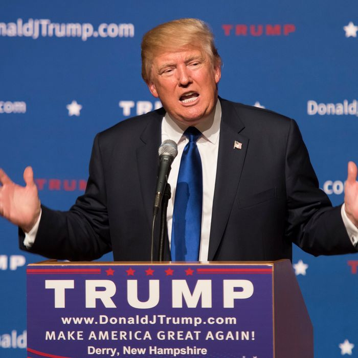 Donald Trump campaigning in New Hampshire