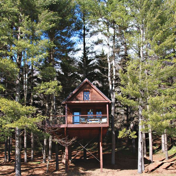 The Joshua Tree House in Bridgewater, Virginia