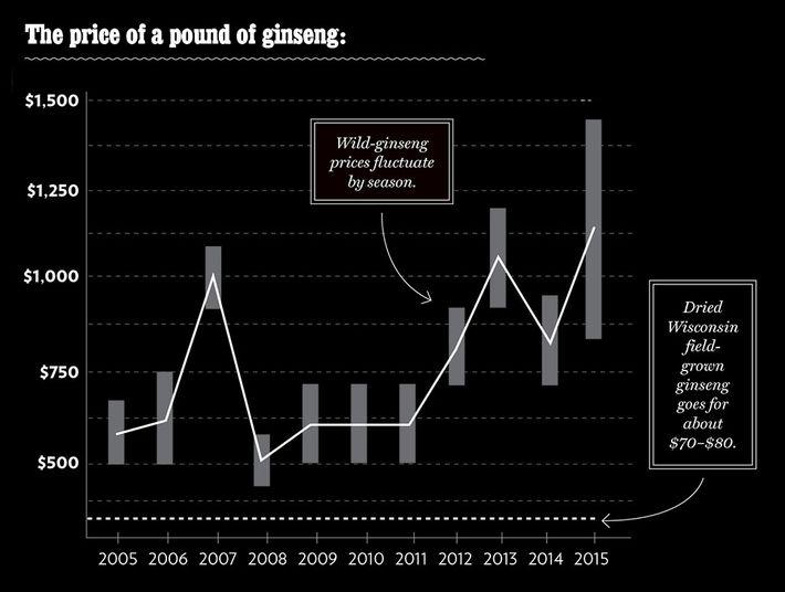 The Craze for Wild Ginseng, America's Alt-Viagra